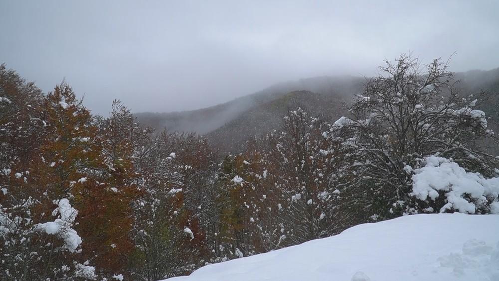Una mirada al frío: la nieve, desde lo alto de Abodi