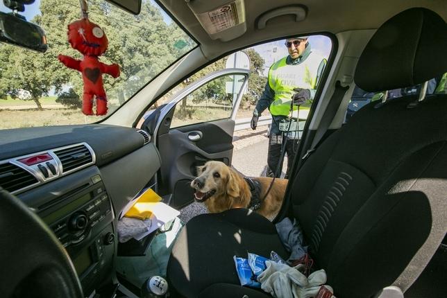 4 toneladas de hachís, 75 kilos de cocaína, 200 apresados Rueda Villaverde