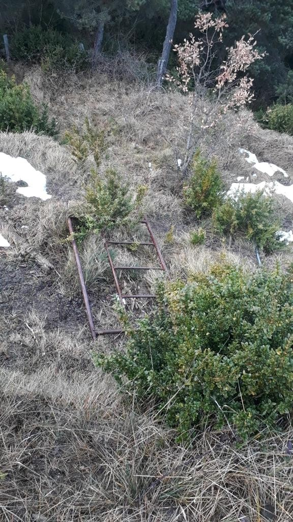 Cazadores navarros denuncian más ataques de los animalistas