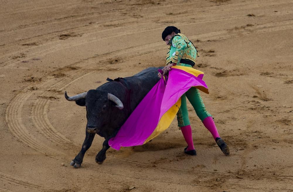 Segunda corrida de la feria taurina celebrada el fin de semana en Ávila.