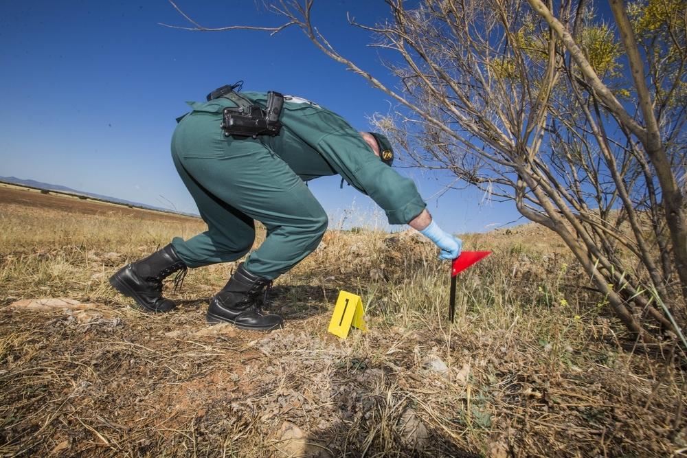 Casi 100 detenidos por delitos contra la naturaleza