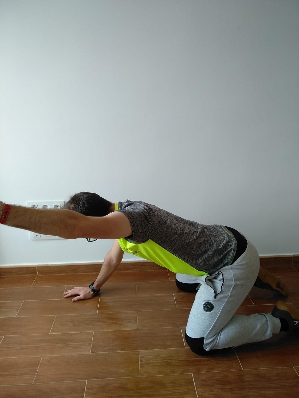 Fuerza y movilidad articular