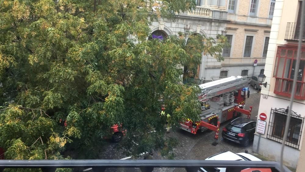 Los bomberos acudieron a la plaza de la Merced.
