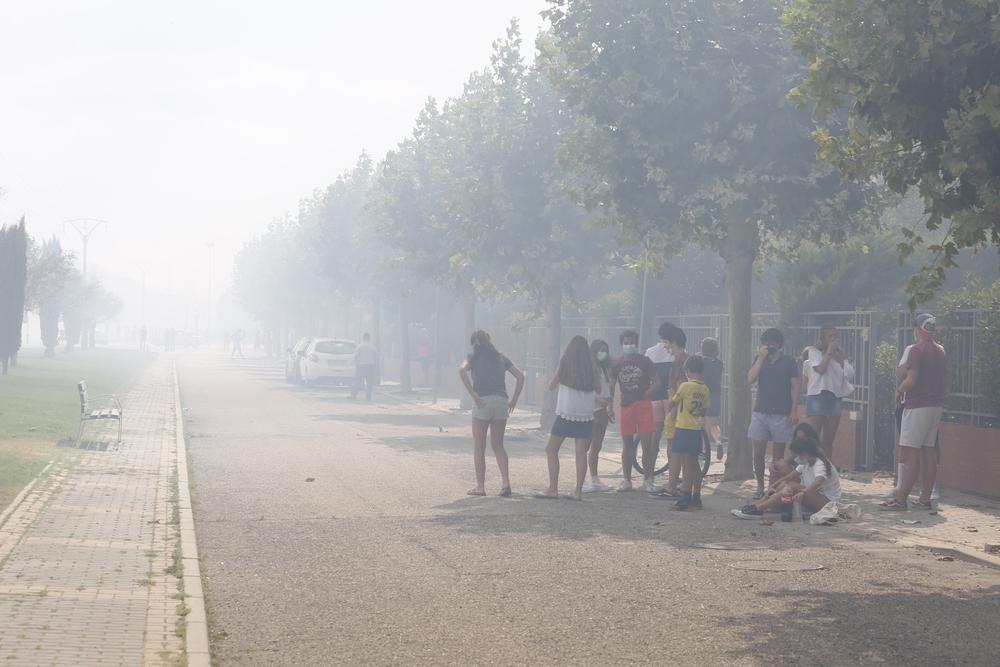 Incendio en el entorno de Entrepinos (Simancas)