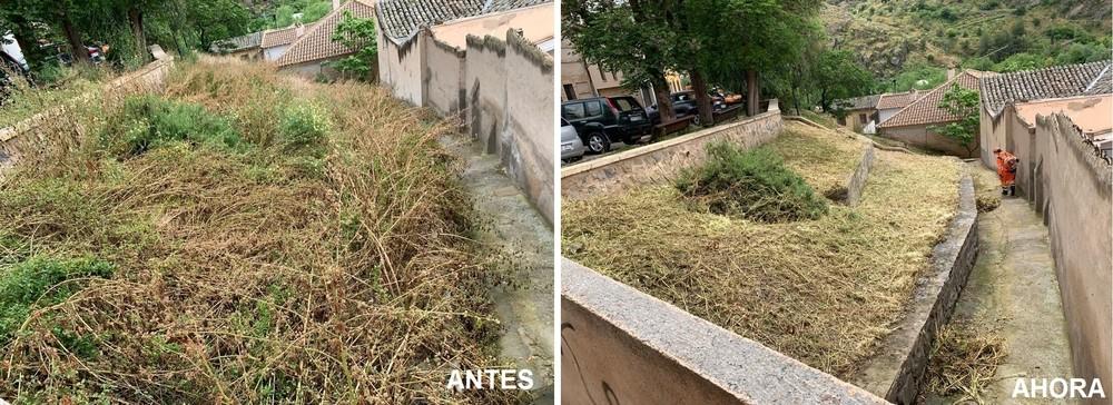 El Ayuntamiento realiza una amplia labor de desbroce