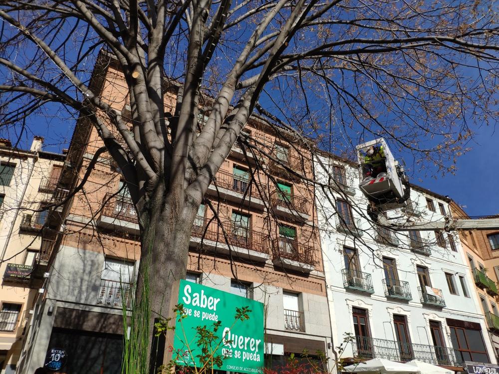 Segovia celebra el Día de las Personas con Discapacidad