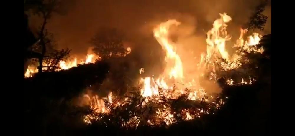 Arden cinco hectáreas de matorral en el monte Oteixon