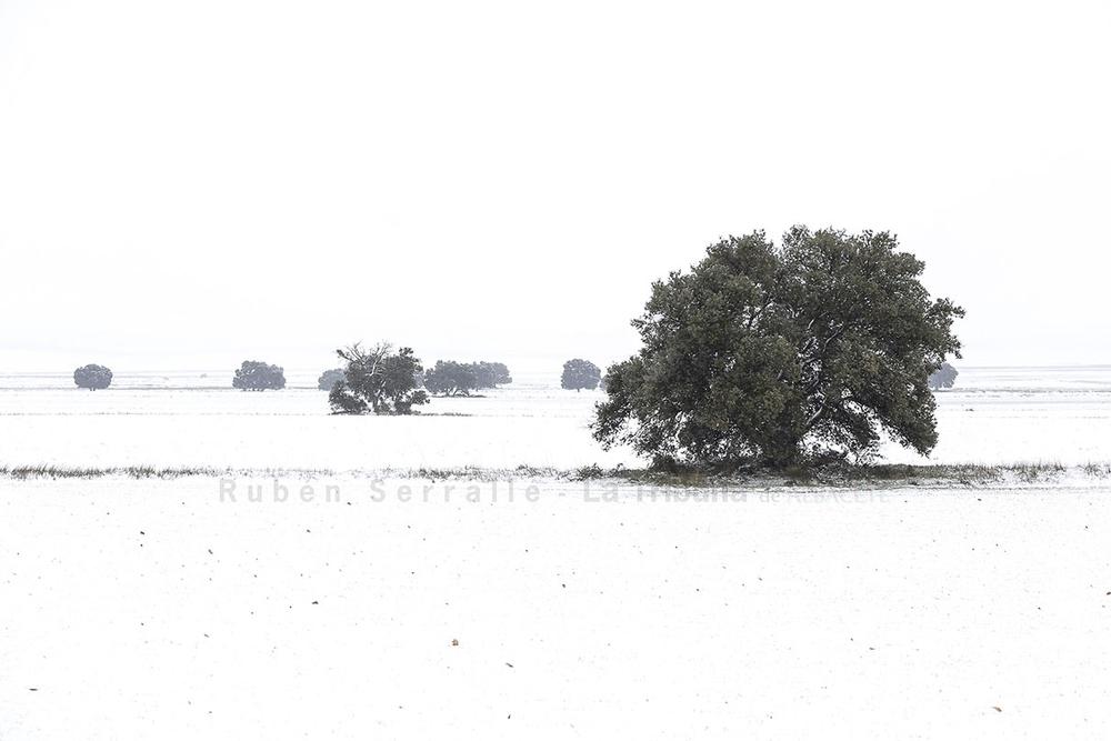 Nieve en la Manchuela