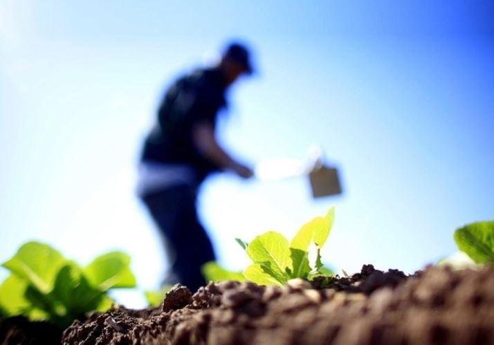 Aprobadas nuevas ayudas que incluyen a autónomos agrarios