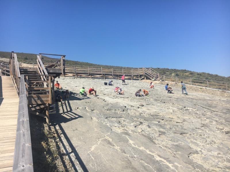 Imagen de un campo de voluntariado, en un yacimiento de huellas de dinosaurios.