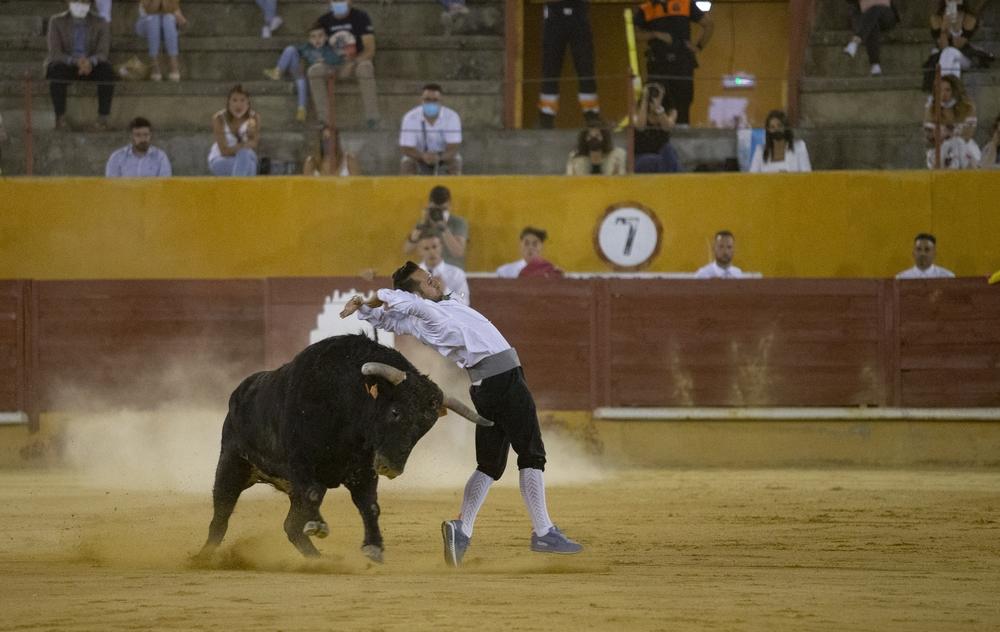 Concurso de recortes en la plaza de toros de Ávila.