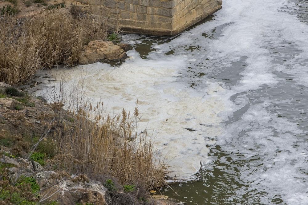 Espumas acumulándose a la orilla del Tajo.