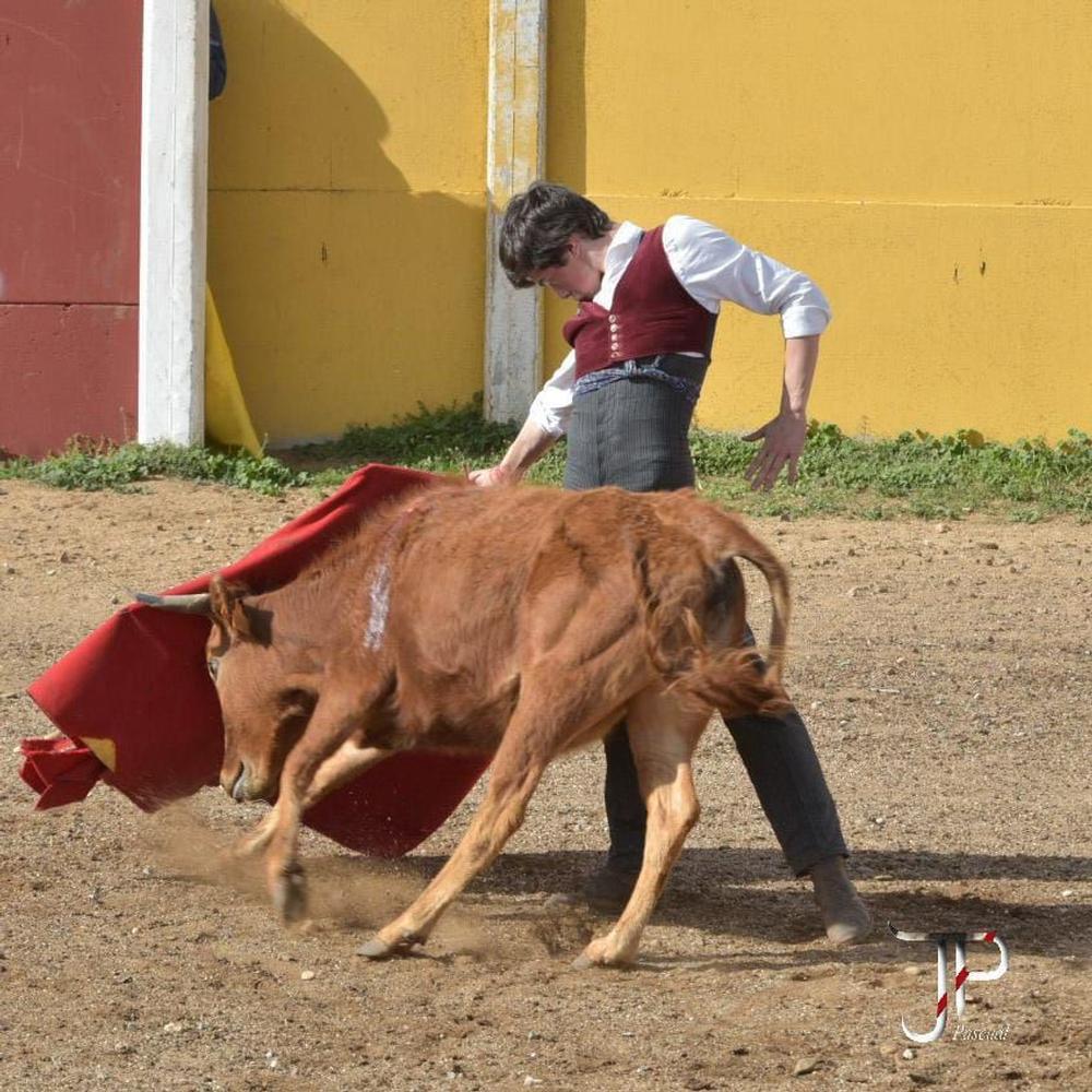 El Encuentro de Escuelas Taurinas llega hoy a Calzada