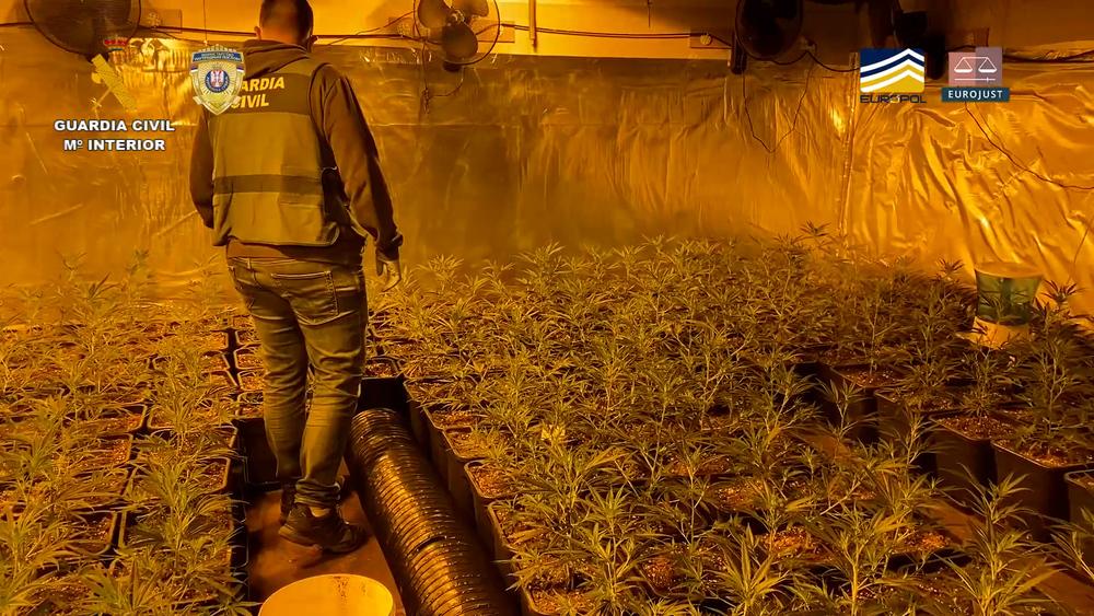 Uno de los dos laboratorios de drogas que la Guardia Civil ha encontrado.