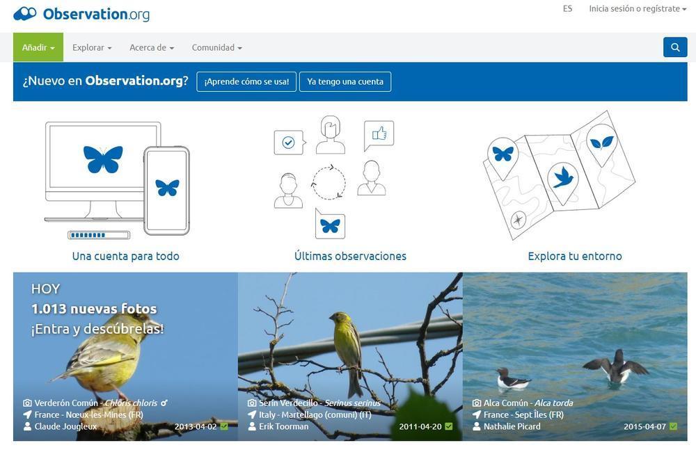 Portal de observation.org