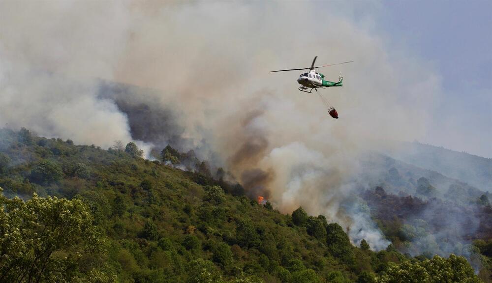 El fuego ha arrasado más de 100 hectáreas arrasadas