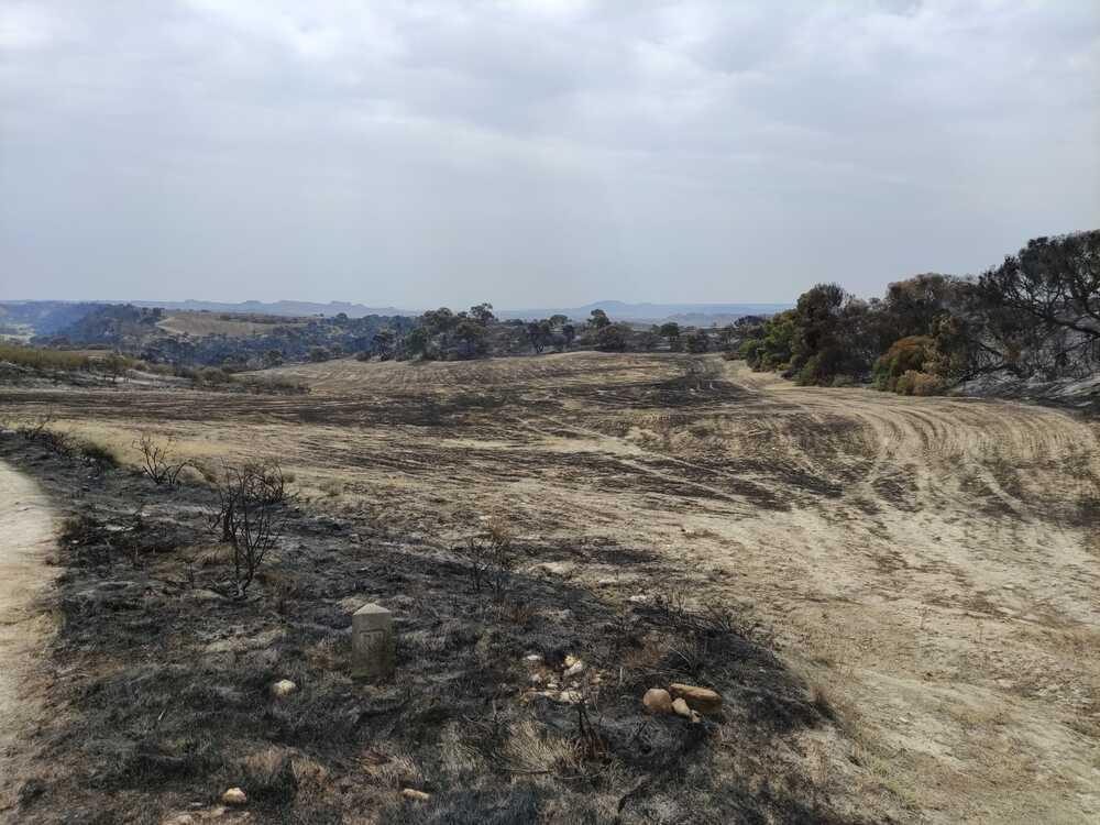 El incendio de Bardenas,estabilizado pero preocupa el viento