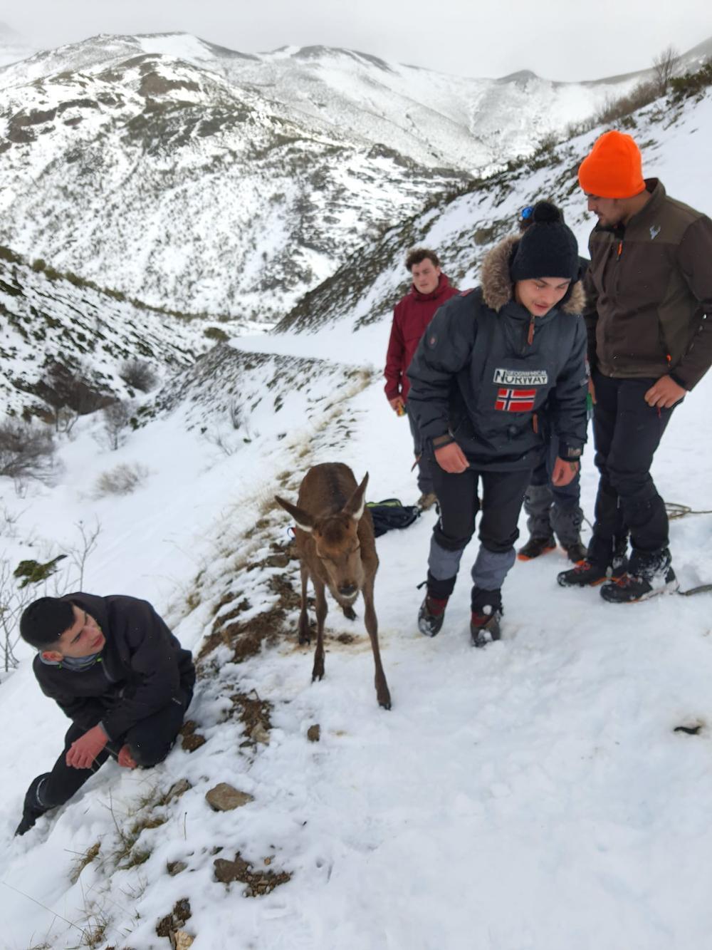 Salvavidas humanos en la montaña
