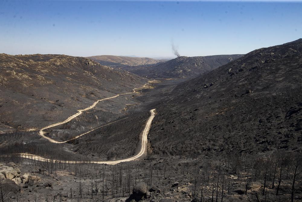 Imágenes de la Sierra calcinada.