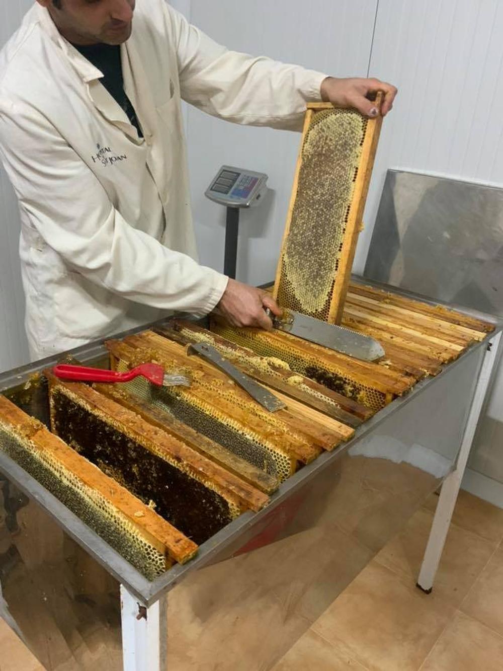 Un panal de rica miel de la montaña