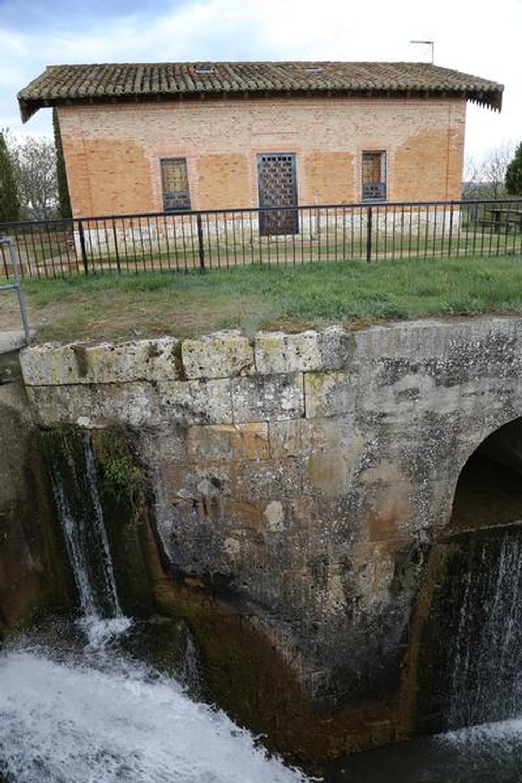Savia nueva para el Soto Albúrez en Villamurieal