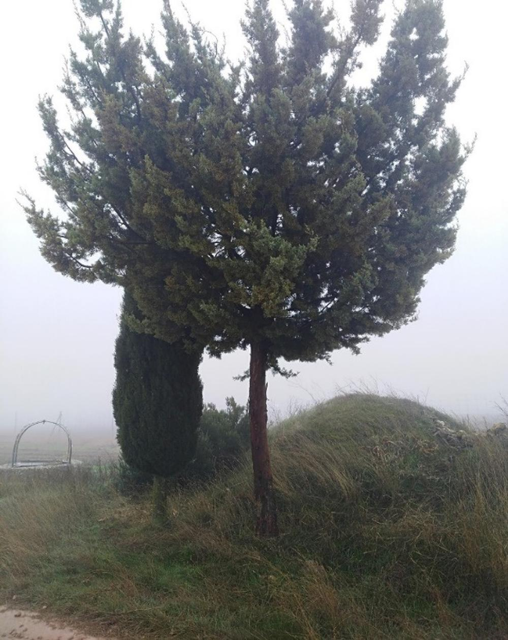 Monte El Chivo, atalaya natural