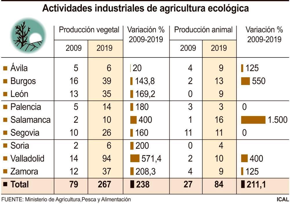 El 10% de industrias transforma productos ecológicos