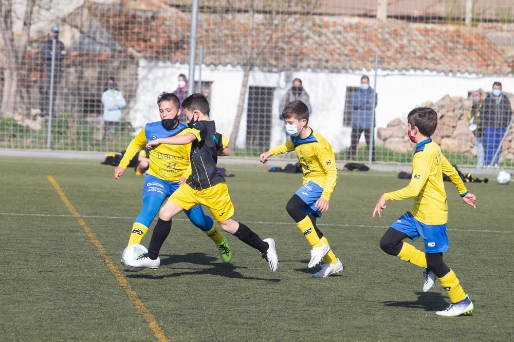 Reanudación de Fútbol Base; Campeonato Regional de Edad.