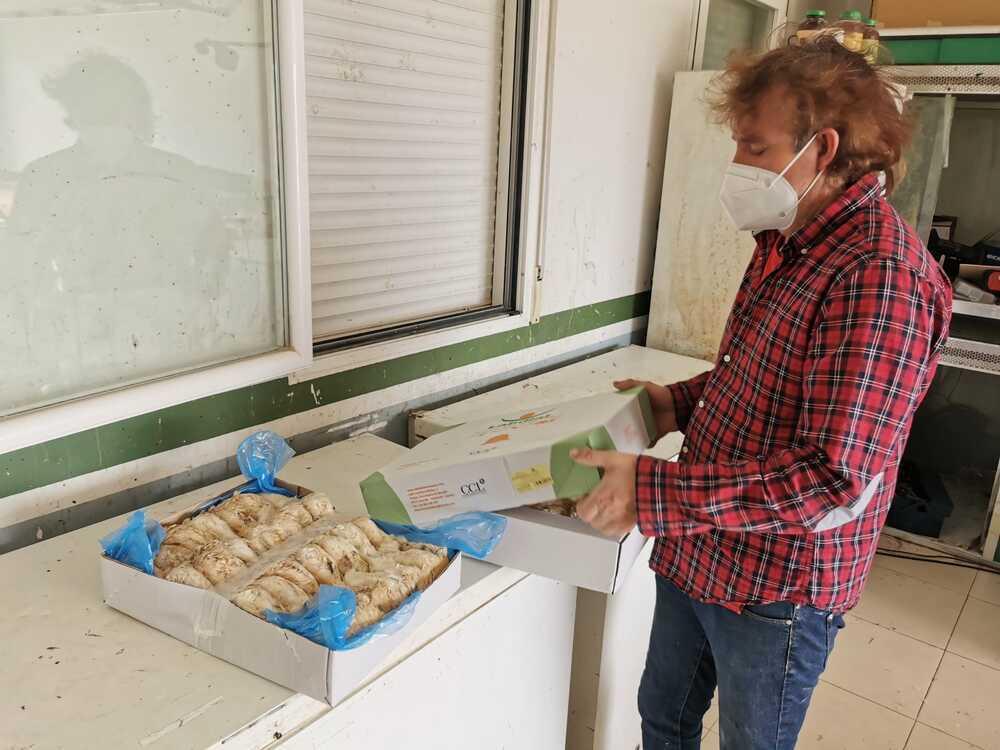 El criador de halcones de Ólvega pide otra alimentación