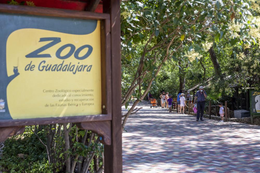 El zoo reabre sus puertas tras los daños por Filomena
