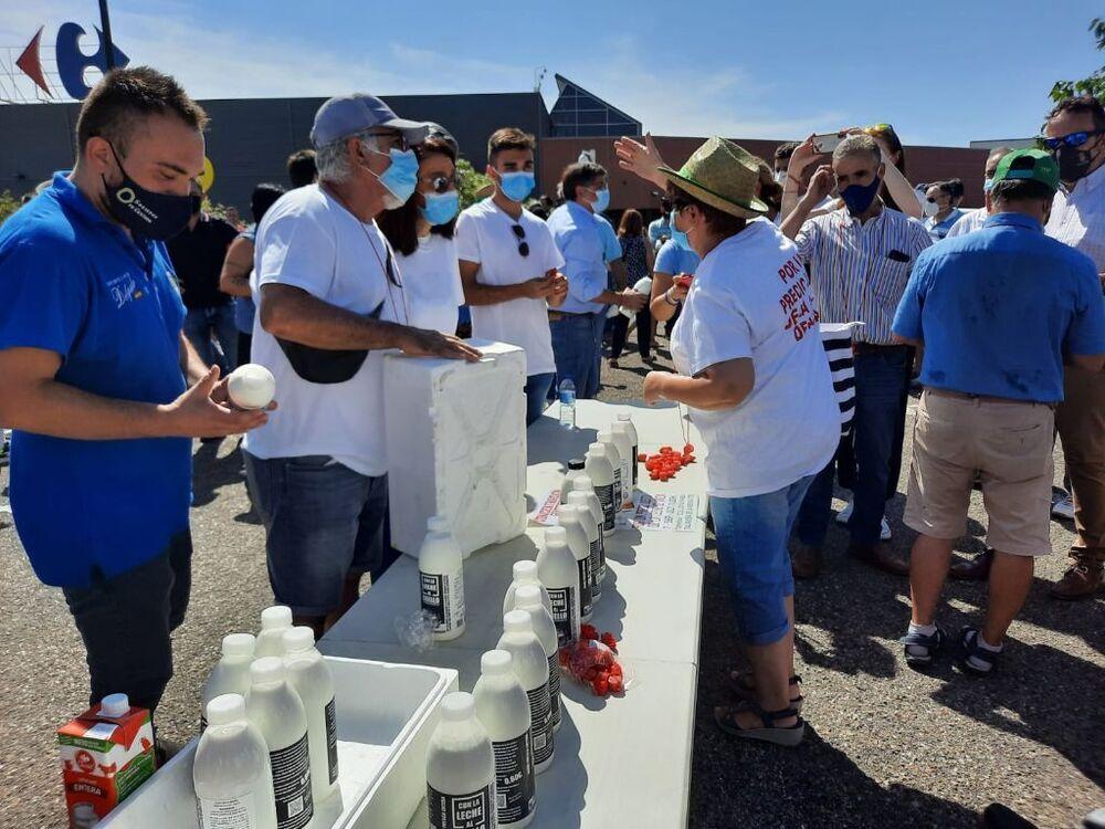 Tractorada de los ganaderos de vacuno de leche en Talavera