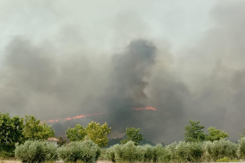 Vista del incendio desde la carretera CM-412.