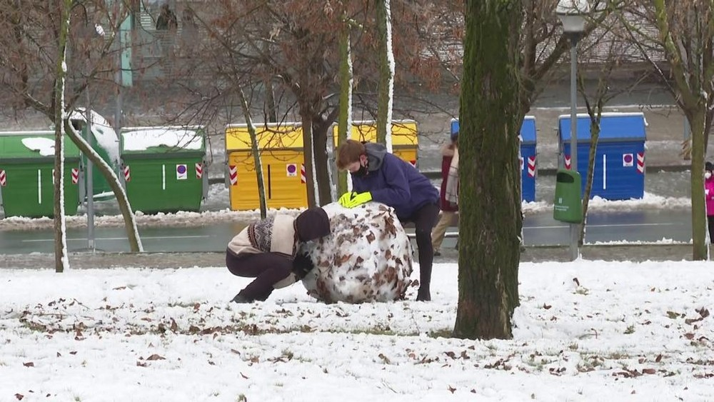 Los muñecos de nieve se han visto en numerosos parques de la ciudad