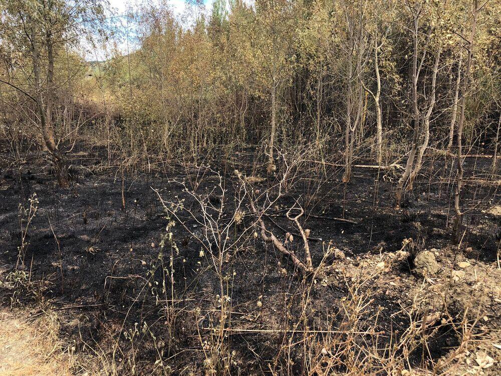 Olloki sigue con el susto en el cuerpo tras el incendio