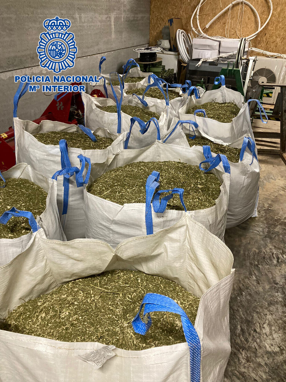 La Policía se incauta de diez toneladas de cannabis