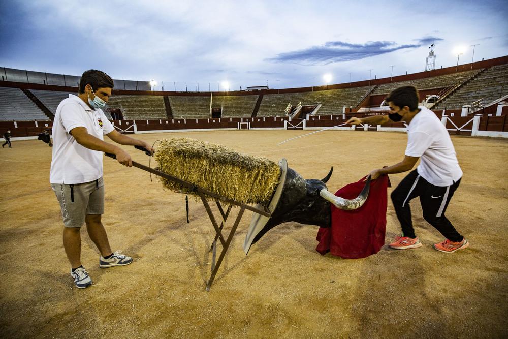El sueño de ser torero