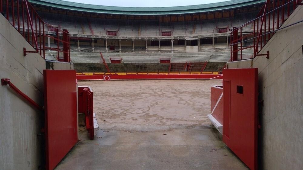 No se descartan los toros en San Fermín Txikito