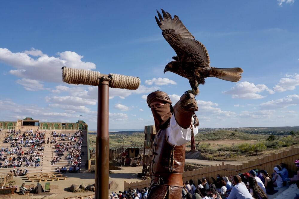 Uno de los cetreros y ave que participan en otros de los espectáculos.