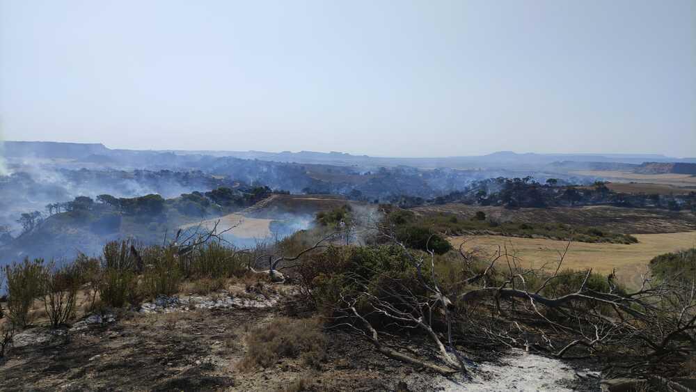 Un tercio del Vedado de Eguaras afectado por las llamas