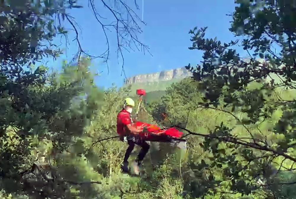 Las ramas de un árbol salvan a una mujer de una brutal caída