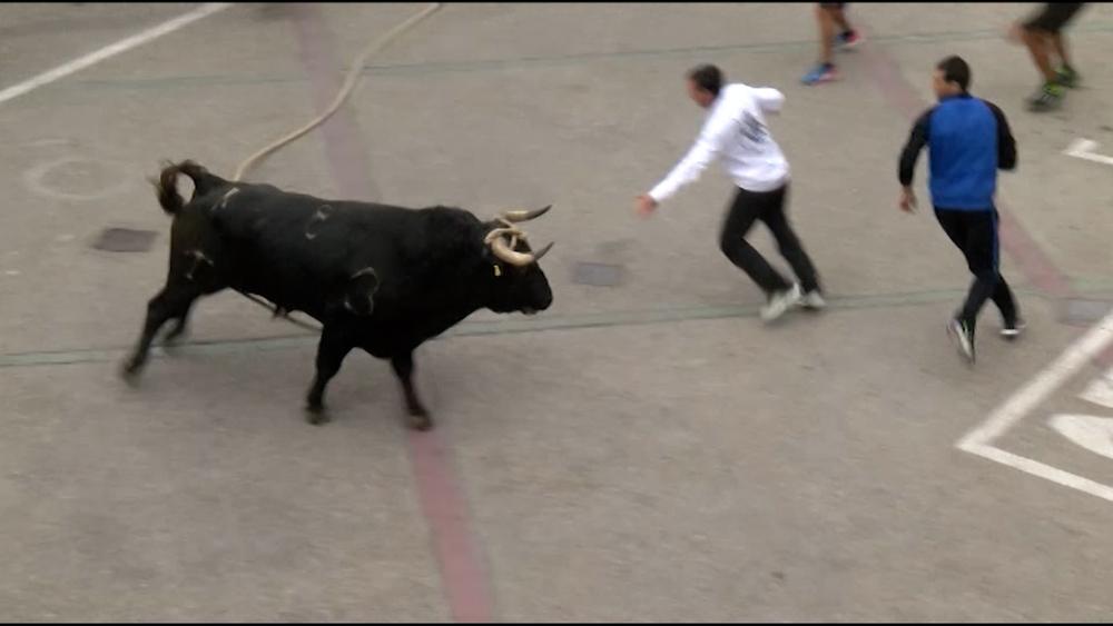 Lodosa da un paso más para celebrar el 'Toro con Soga'
