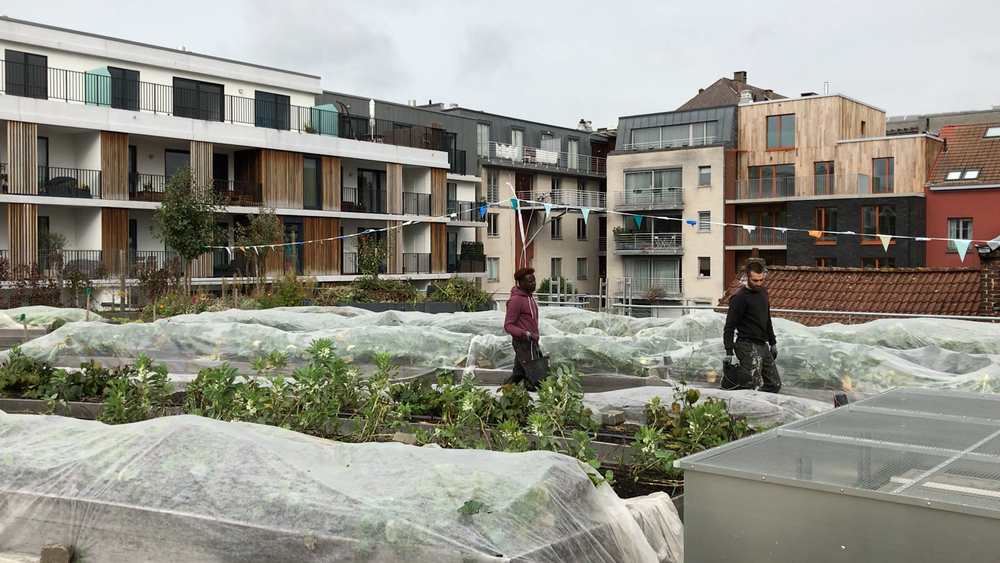 Un huerto urbano en pleno centro de Bruselas