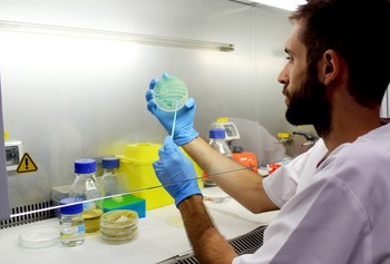 Aumentan a 226 los casos confirmados por listeria en España