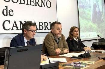 Cuatro de las 38 hembras  de oso están en Palencia