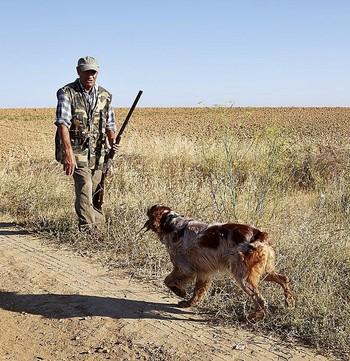 Un cazador y su perro, durante una jornada cinegética.