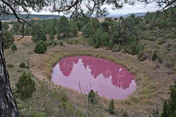 La 'laguna rosa' se congela