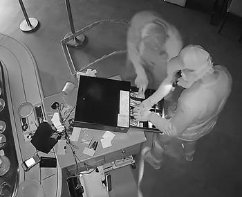 Cae una banda experta en el robo de tragaperras