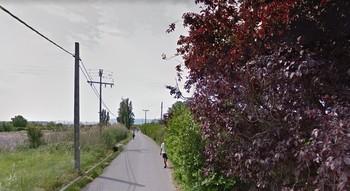 Imagen del Camino Viejo de Alberite