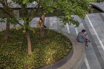 Reportan dos muertes por peste bubónica en el norte de China