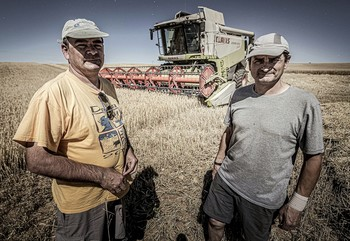 Una cosecha agridulce en Soria